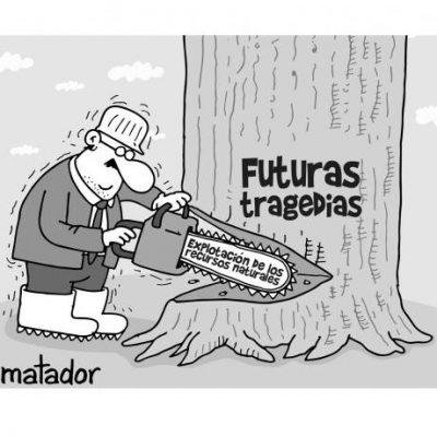 58e2fba20590f - Atención a la deforestación