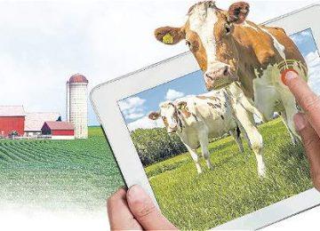 IMAGEN 16382760 2 360x260 - Descubra cómo el campo colombiano está adoptando la tecnología