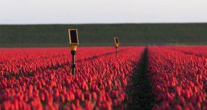 agricultura intelgencia artificial 300x160 - La Inteligencia Artificial y el repensar del mercado laboral