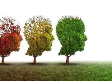 ryaqf7aHb 930x525 360x260 - Cerebros resistentes al Alzheimer
