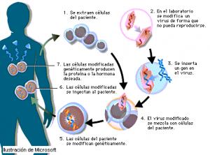 000228512 300x222 - Tecnología y biociencias: la era de los poshumanos
