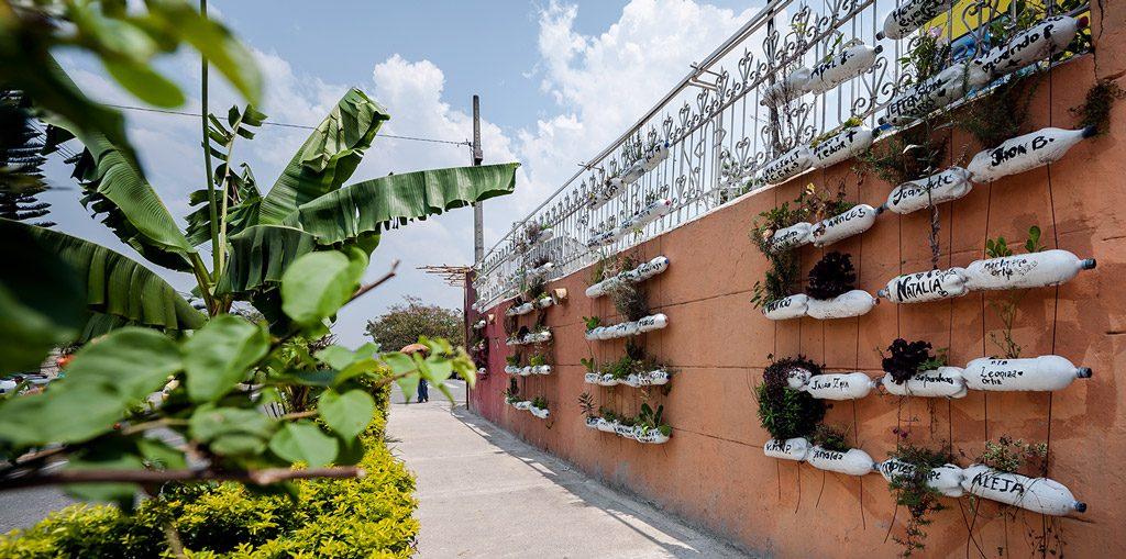 Bacanika huertas urbanas 01 1024x509 - Huertas públicas en las comunas de Medellín.