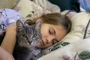 Girl sleeping with her cat NealMolly Jansen 300x200 - ¿Por qué una mascota mejora su vida?