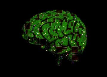 brain 1845944 1920FINAL 360x260 - ¿Qué le depara la inteligencia artificial a las empresas en 2017?