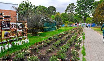 cv 360x213 - Ejemplos de agricultura urbana en Bogotá.