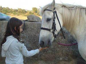 foto1 300x225 - ¿Por qué una mascota mejora su vida?