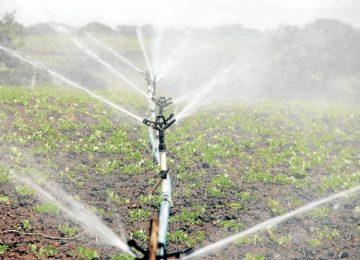 la nueva era tecnologica de la agricultura 360x260 - La nueva era tecnológica de la agricultura