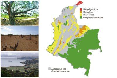 lista roja - El 46 % de los ecosistemas de Colombia están en riesgo