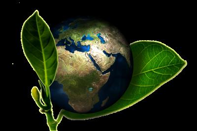 permacultura ecosistemas humanos sostenibles 2 - Permacultura, ¿Qué es y cómo funciona?