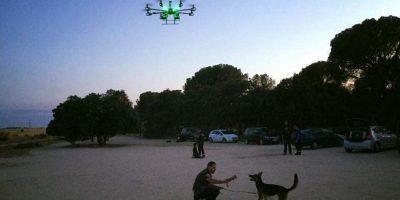 58d043ff57b50.r 1490202332531.0 170 1920 1130 - Perros y drones, unión clave para salvar vidas en labores de rescate