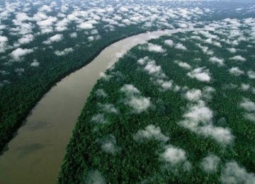 amazonas 360x260 - Amazonia, corredor invaluable