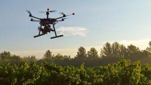busqueda personas drones 300x169 - Perros y drones, unión clave para salvar vidas en labores de rescate