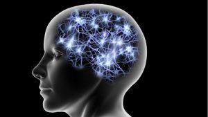 95365830 gettyimages 151330440 300x169 - El ambicioso plan de Elon Musk para conectar el cerebro con el PC