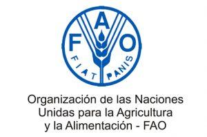 FAO 300x198 - El hambre y la desigualdad en Colombia