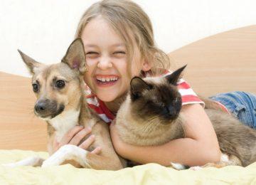 mascotas para niños e1452530071225 360x260 - Las cinco mejores mascotas para los niños