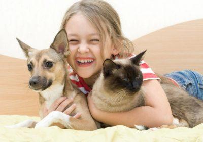 mascotas para niños e1452530071225 - Las cinco mejores mascotas para los niños