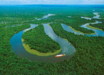 tour amazaonas 360x260 - La plataforma que permite conocer que está pasando en la Amazonía