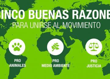1508749018 319000 1508749959 noticia normal recorte1 360x260 - ¿Y Colombia qué va a hacer?