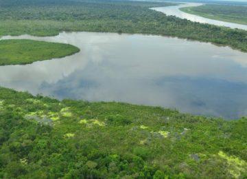 590a6bc047078 360x260 - La mitad de ecosistemas en Colombia están amenazados