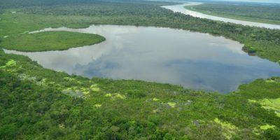 590a6bc047078 - La mitad de ecosistemas en Colombia están amenazados