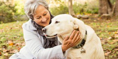 5a189668dbb09 - Un perro amigo ayuda a la buena salud del corazón