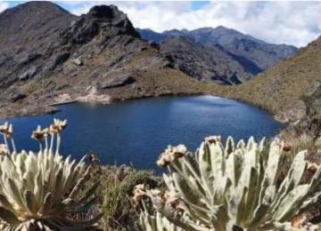 YbTcRsAnOjCLQss 800x450 noPad 360x260 - Necesitamos que la UNESCO declare los páramos como Patrimonio Natural de la Humanidad