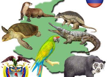 mapacolombia 360x260 - Noticias de animales