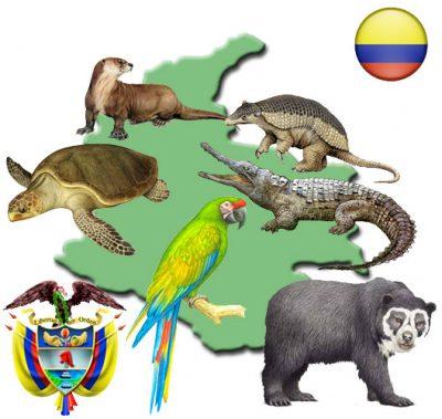 mapacolombia - Noticias de animales