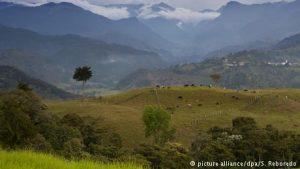 35936950 302 300x169 - Deutsche Welle abre oficina de corresponsalía en Colombia