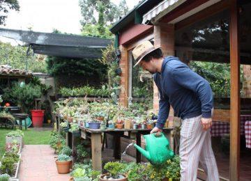 5ae1273cdbf45 360x260 - El jardinero de Suba que tiene 7.500 plantas