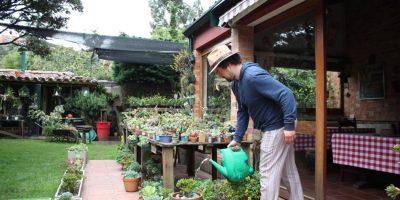 5ae1273cdbf45 - El jardinero de Suba que tiene 7.500 plantas