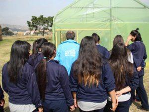 5ae2625d1b2a3 300x225 - Con una huerta orgánica resocializan a jóvenes infractores en Bogotá