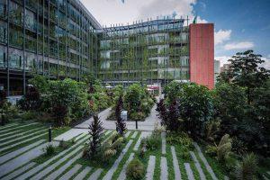 rutan jardin2 300x200 - Innovación, pilar de la educación