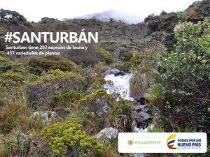 0aa19ce5d5097d496bd165a8dc68684a colombia 300x225 - El SOS que lanzan 14 científicos para proteger el Páramo de Santurbán.