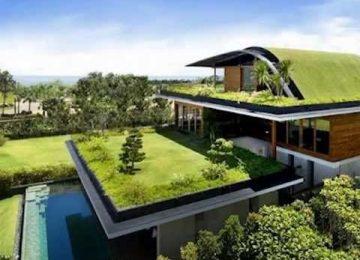 """cb7a6f0aea299229eb817a2de61b63b2 360x260 - """"Queremos que todos los techos sean verdes"""""""