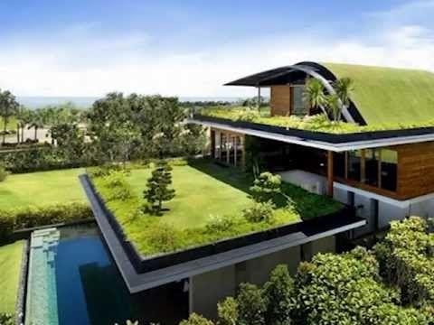 """cb7a6f0aea299229eb817a2de61b63b2 - """"Queremos que todos los techos sean verdes"""""""