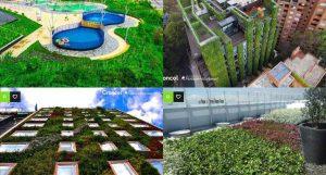 """groncol 300x161 - """"Queremos que todos los techos sean verdes"""""""
