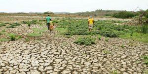 IMAGEN 14781078 2 300x150 - Cinco efectos visibles del cambio climático en Colombia