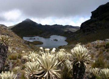 """paramo santurban santander 2 360x260 - """"El turismo puede acabar con el páramo de Santurbán"""": ambientalistas de Santander"""