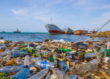 Actualidad 311230508 79874774 1706x960 360x260 - Un joven inventor sueña con limpiar los océanos,y salvar la vida de las especies marinas.