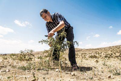 10diciembre vivir1ph01 1544389187 - El hombre que hizo florecer el desierto