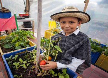 42753 1 360x260 - La huerta donde los niños cultivan su amor por el medio ambiente