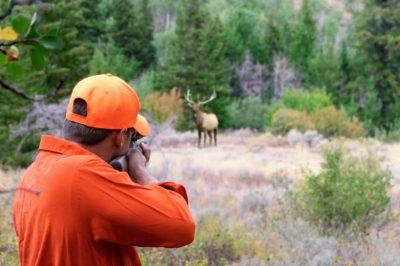 caza - Fulminante fallo acaba con la caza deportiva en Colombia