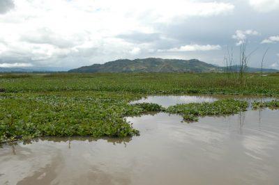 laguna 2 2 - Más de cinco mil millones se destinarán para recuperar la laguna de Fúquene