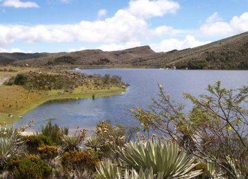 parque nacional natural sumapaz 692037 360x260 - El Banco2, protege el ecosistema del Páramo de Sumapaz//YouTube//Colombia.com