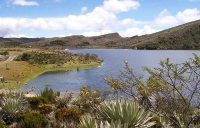 parque nacional natural sumapaz 692037 - El Banco2, protege el ecosistema del Páramo de Sumapaz//YouTube//Colombia.com