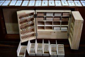 2506265cbcb00068f3c 1 300x200 - La selva atrapada en un museo de madera