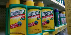 5c91932780c3a 300x150 - El glifosato, un herbicida polémico en todo el mundo