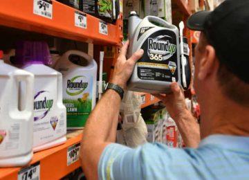 MONSANTO GLIFOSATO 360x260 - El glifosato, un herbicida polémico en todo el mundo