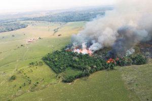 """amazonas 21 300x200 - Compromisos tras fallo que entregó derechos a la Amazonía """"no se traducen en acciones"""""""